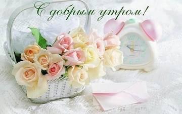 http://s7.uploads.ru/t/7BRvn.jpg