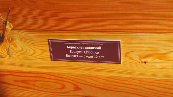 http://s7.uploads.ru/t/7Icb6.jpg