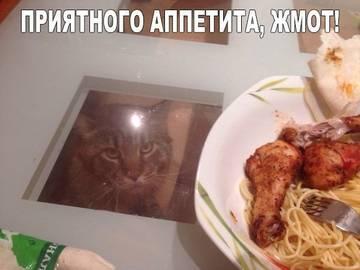 http://s7.uploads.ru/t/7YbaS.jpg