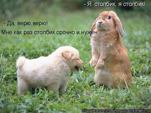 http://s7.uploads.ru/t/8YfWG.jpg