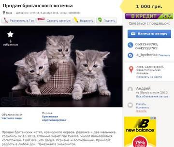 http://s7.uploads.ru/t/8kSfT.jpg