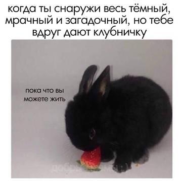 http://s7.uploads.ru/t/91FAO.jpg