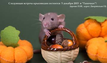 http://s7.uploads.ru/t/9dTs6.jpg