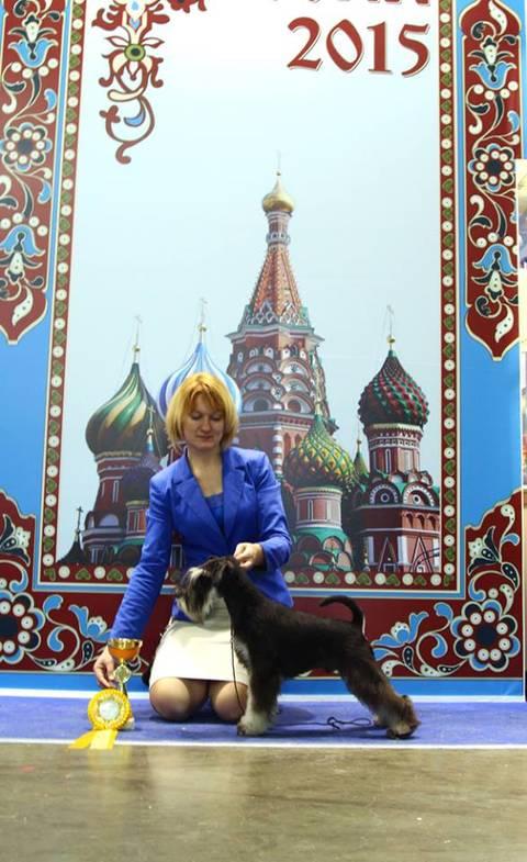 http://s7.uploads.ru/t/9wAnd.jpg