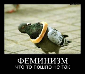 http://s7.uploads.ru/t/9xhi3.jpg