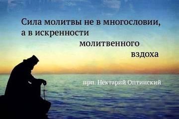 http://s7.uploads.ru/t/A7NLM.jpg