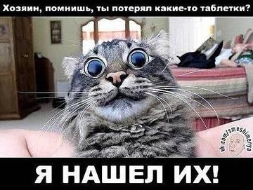 http://s7.uploads.ru/t/AVruB.jpg