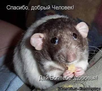http://s7.uploads.ru/t/AZOyD.jpg