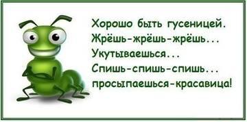http://s7.uploads.ru/t/BmDti.jpg
