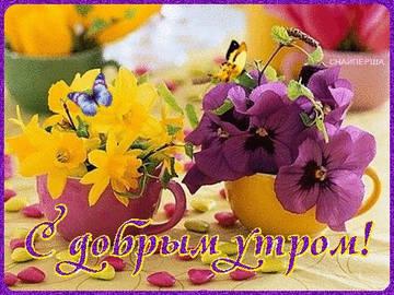 http://s7.uploads.ru/t/CAcN8.jpg