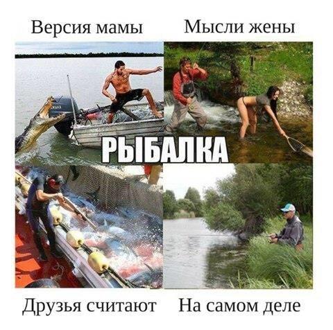 http://s7.uploads.ru/t/CPgla.jpg
