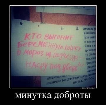 http://s7.uploads.ru/t/CUwXD.jpg