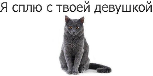 http://s7.uploads.ru/t/CYdLh.jpg