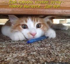 http://s7.uploads.ru/t/ClRhO.jpg