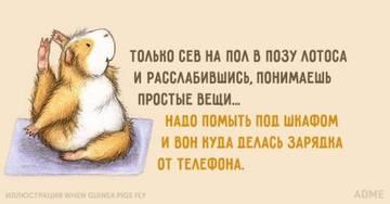 http://s7.uploads.ru/t/CxAmT.jpg