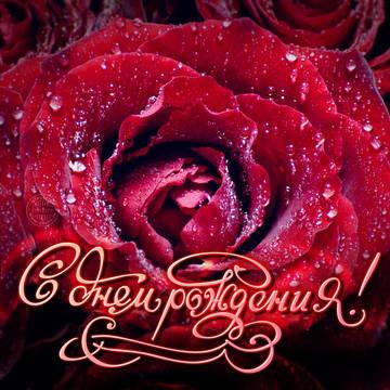 http://s7.uploads.ru/t/DT0fQ.jpg