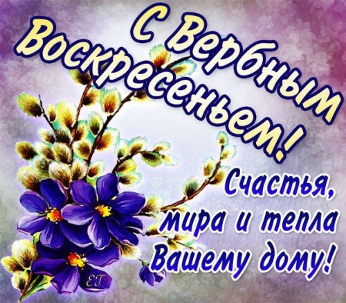 http://s7.uploads.ru/t/Dc6GB.jpg