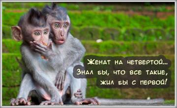 http://s7.uploads.ru/t/E7Car.jpg