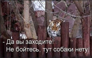 http://s7.uploads.ru/t/EHjBV.jpg