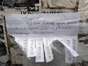 http://s7.uploads.ru/t/EODUw.jpg