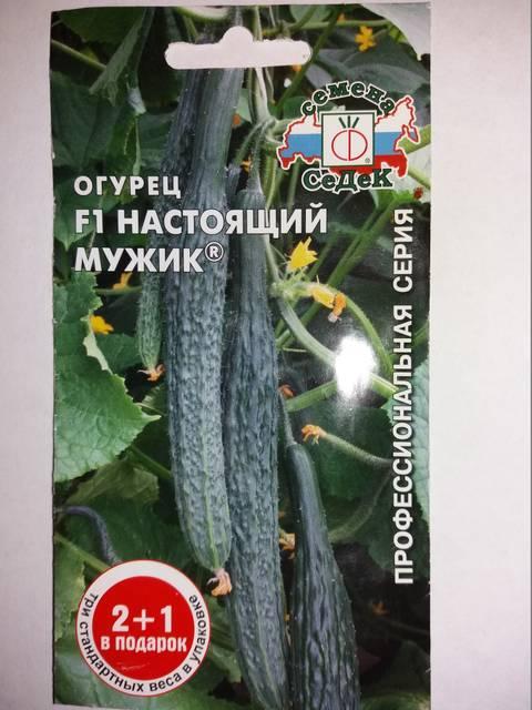 http://s7.uploads.ru/t/EmaSh.jpg