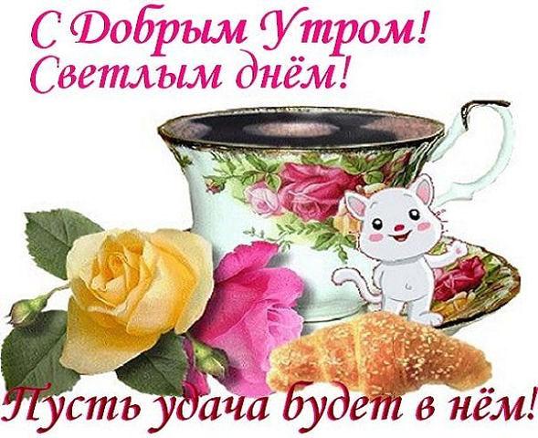 http://s7.uploads.ru/t/EvO0h.jpg