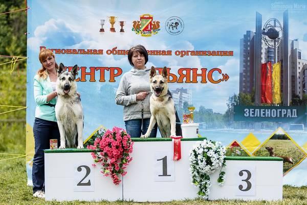 МОНО ВЕО КЧК+ 3 САС 10-11 июня г.Зеленоград F4vBG