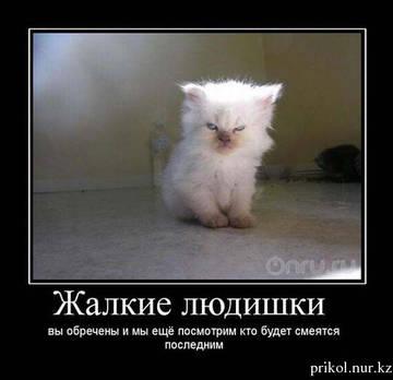 http://s7.uploads.ru/t/FLD05.jpg