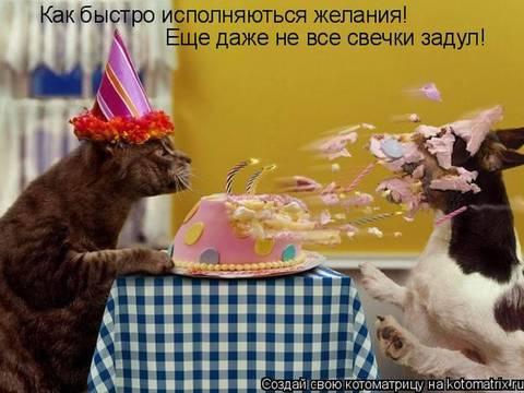 http://s7.uploads.ru/t/FXNET.jpg