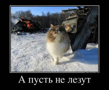 http://s7.uploads.ru/t/FYwKs.jpg