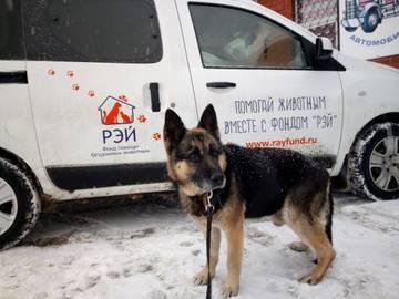 http://s7.uploads.ru/t/G7orR.jpg