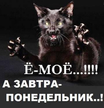http://s7.uploads.ru/t/GL0Y4.jpg