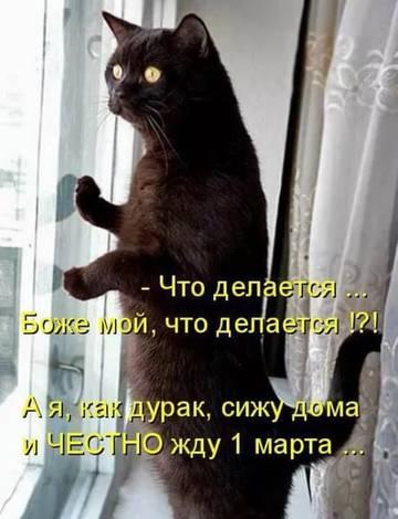 http://s7.uploads.ru/t/GhvO8.jpg