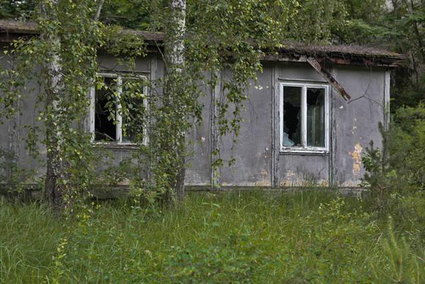http://s7.uploads.ru/t/GqKmy.jpg