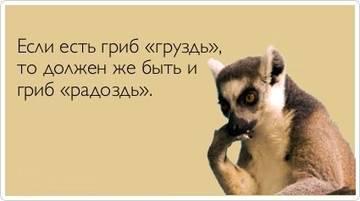 http://s7.uploads.ru/t/H3Ri2.jpg