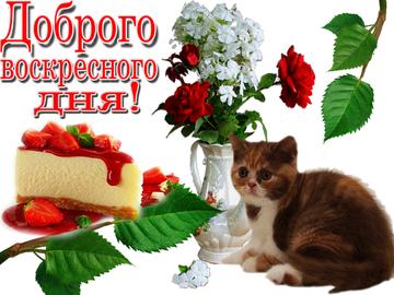 http://s7.uploads.ru/t/HgtIx.png