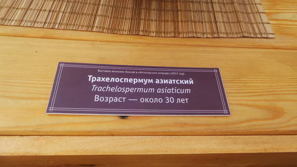 http://s7.uploads.ru/t/Huwri.jpg