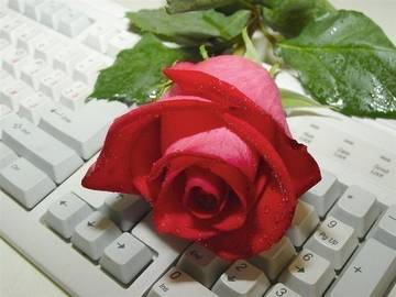 http://s7.uploads.ru/t/IKSTu.jpg