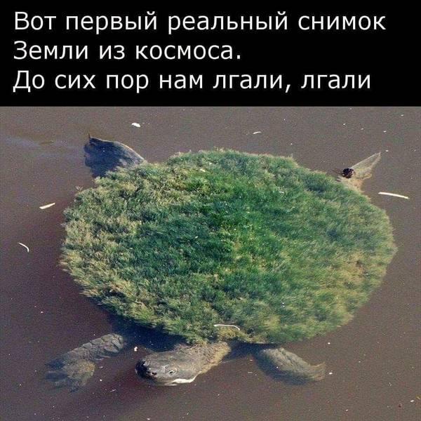 http://s7.uploads.ru/t/IyRzY.jpg