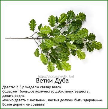 http://s7.uploads.ru/t/JOhDk.jpg