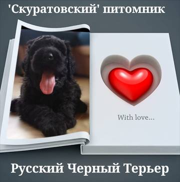 http://s7.uploads.ru/t/JWI0Y.jpg