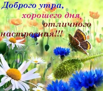http://s7.uploads.ru/t/Jh6SO.jpg