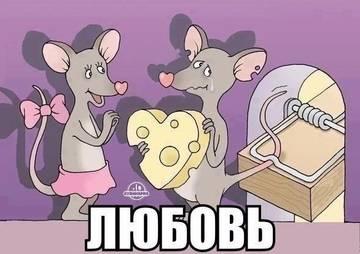 http://s7.uploads.ru/t/JuZTC.jpg