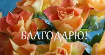 http://s7.uploads.ru/t/JuiRe.jpg