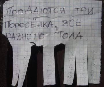 http://s7.uploads.ru/t/KCRxa.jpg