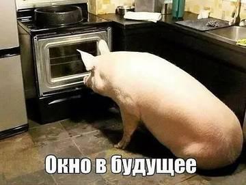 http://s7.uploads.ru/t/KTl2o.jpg