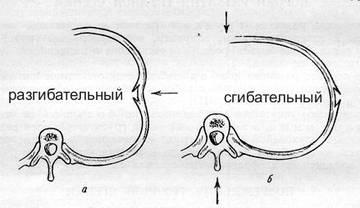http://s7.uploads.ru/t/KVmg1.jpg