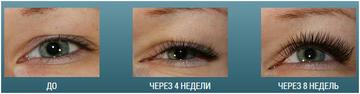 http://s7.uploads.ru/t/Ke4BZ.png