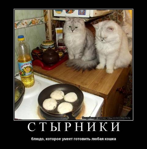 http://s7.uploads.ru/t/KeBAk.jpg