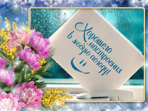 http://s7.uploads.ru/t/LAsne.jpg